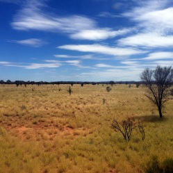 View from The Ghan, Red Class